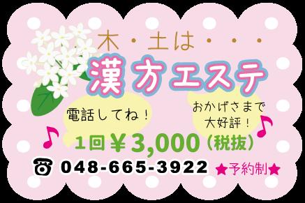 埼玉県さいたま市の漢方薬局もも木薬局の漢方エステ